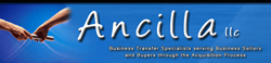 Ancilla Consulting Solutions, LLC